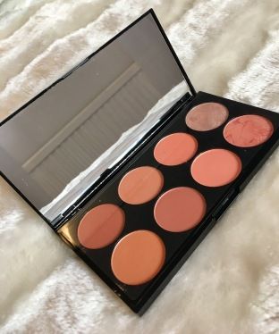 Revolution Blush Palette.JPG